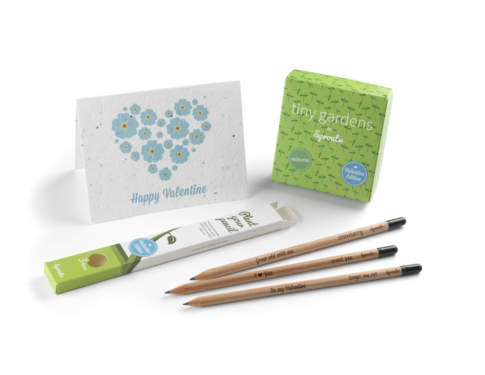 Sprout has created a limited edition range of flowering cards, germinating pencils and micro gardens for the perfect sustainable Valentine Gift.