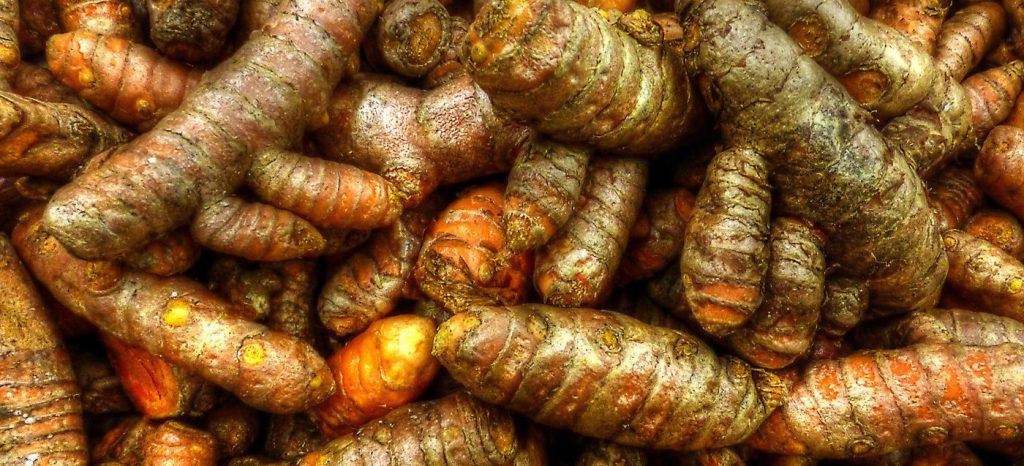 Organic turmeric root prized in Ayurveda the medicine of India for its ant-inflammatory action.