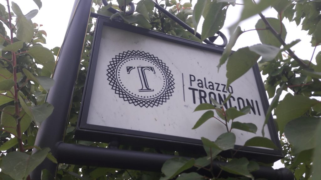 The vineyard at Palazzo Tronconi, Italy