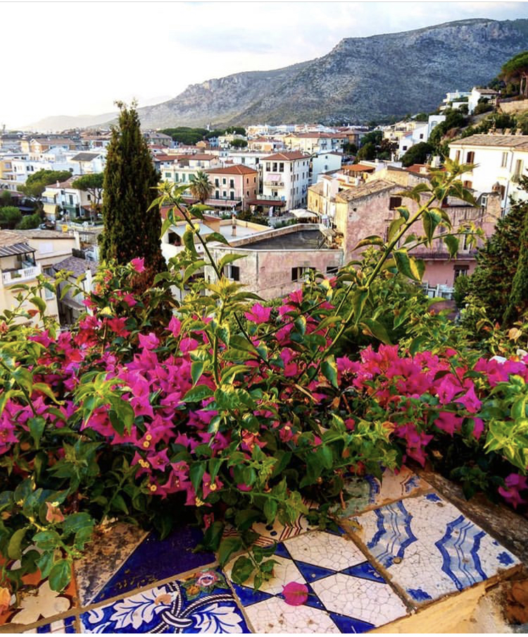 Bougainvillea growing in the ancient hilltop town of Sperlonga, Italy