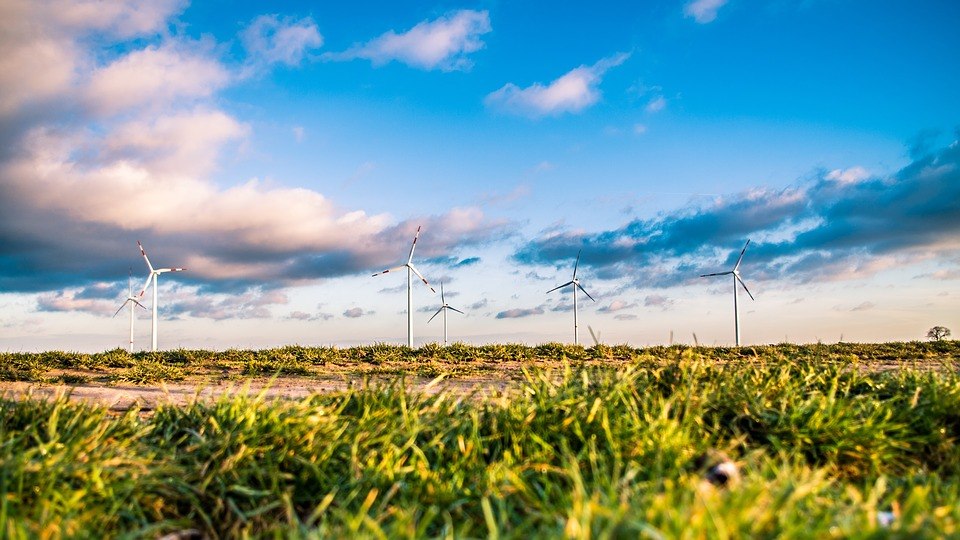 Wind Turbines Generating Sustainable Energy