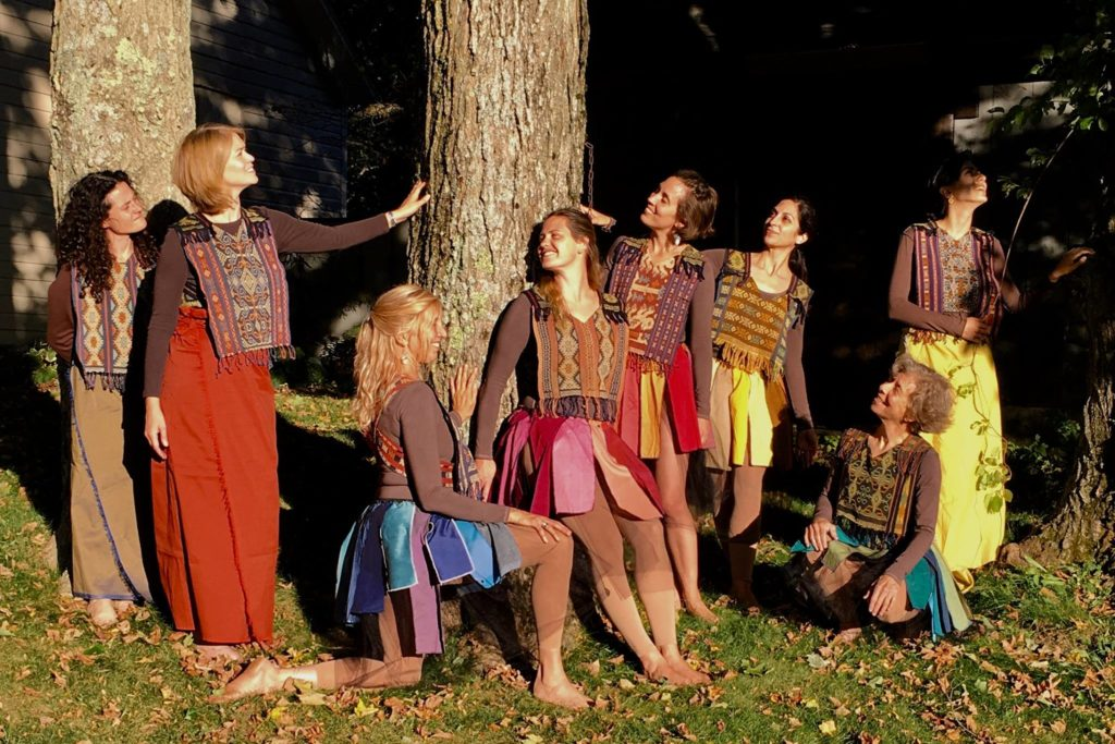 Berkshire Grove, TreeSisters show the benefits of trees for sustaining life on earth - Photo Credit Amber Chand (1)
