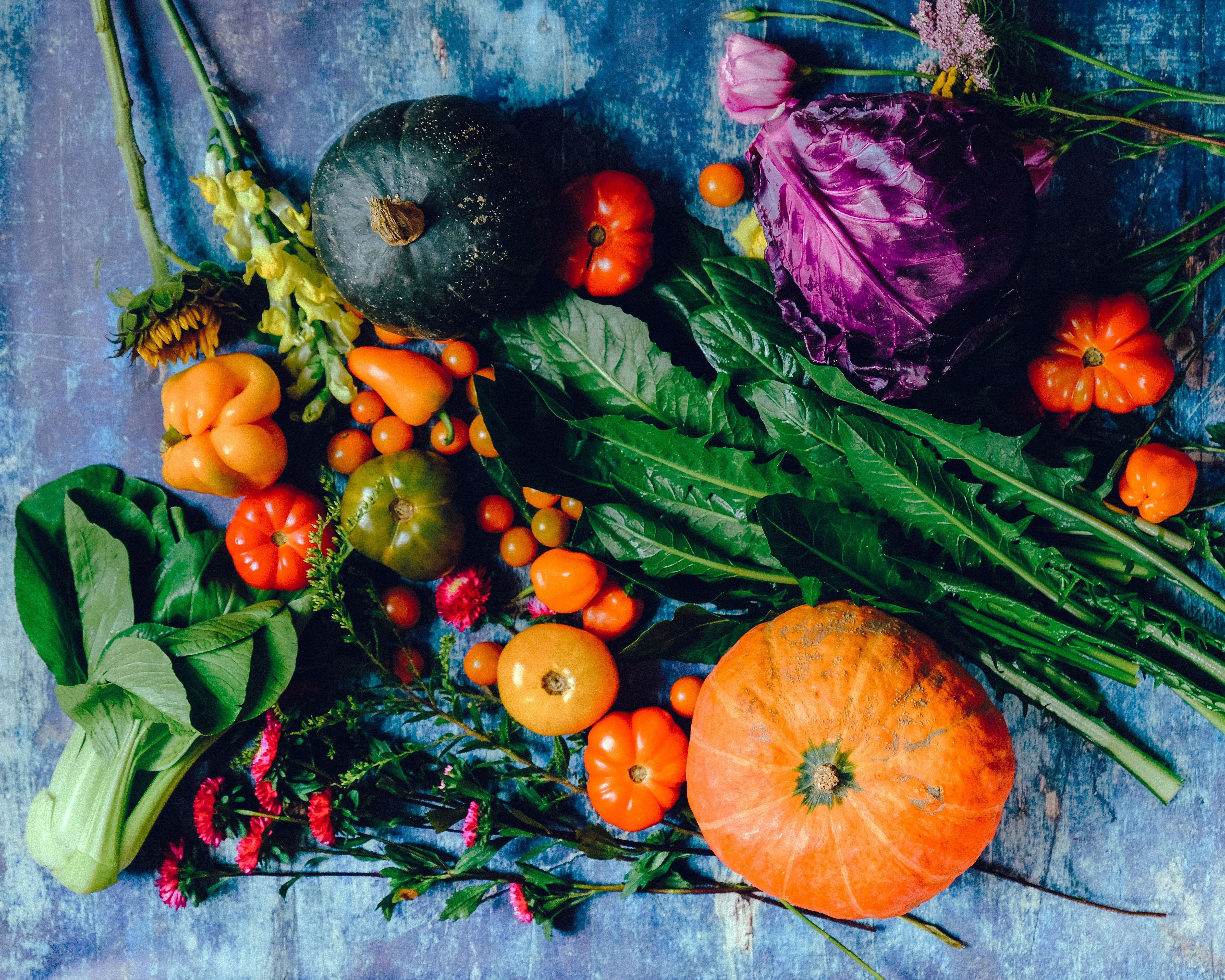A slate table is covered with fresh garden vegetables and plants like gourds, tomatoes, cabbage and sunflowers. Photo by Ella Olson from Pexels.