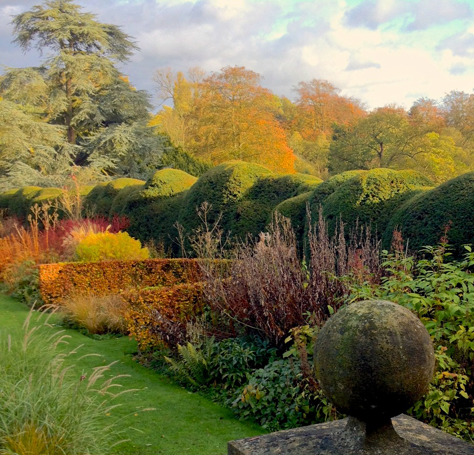 A view of the hedges and autumn plants at the Long Border Garden at Waltham Place. Photo courtesy of Waltham Place.