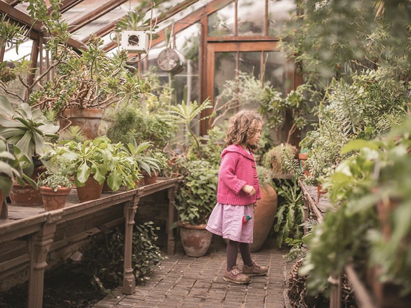 A little girl inspects an indoor greenhouse at Chelsea Physic Garden. Photo courtesy of Chelsea Physic Garden.