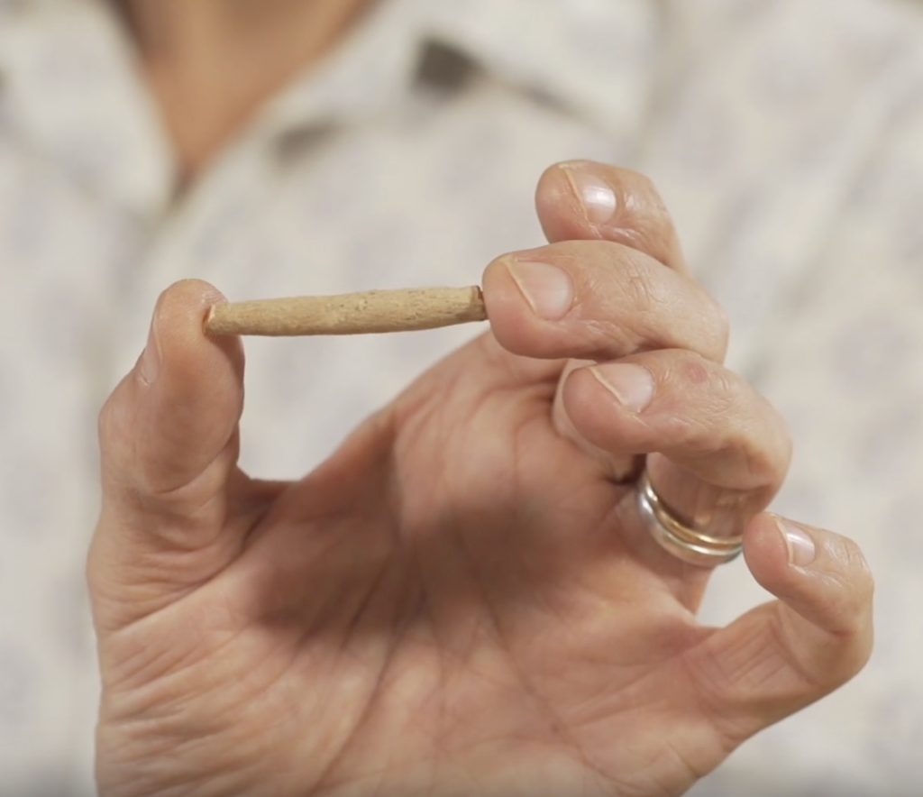Sebastian Pole, co-founder of Pukka Herbs and Master Herbalist, holds a piece of dried aswaghanda root up close to the camera.